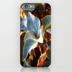 Desert Leaves II iPhone 6s Slim Case