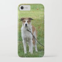 courage iPhone & iPod Cases featuring Courage by Kaleena Kollmeier