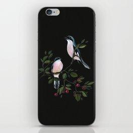 Let Us Look On iPhone Skin