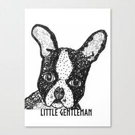 Boston terrier - Little gentleman Canvas Print