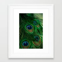 peacock Framed Art Prints featuring Peacock by Olivia Joy StClaire