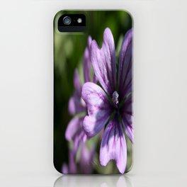 Mauve Mallow iPhone Case