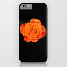Romantic Rose Orange iPhone 6s Slim Case