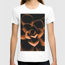 Succulent in Terracotta Color #decor #society6 #buyart T-shirt