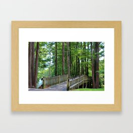 A Walk Over The Lake Framed Art Print