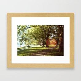 Sunshine by the Rhein Framed Art Print