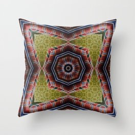 Basilica Throw Pillow
