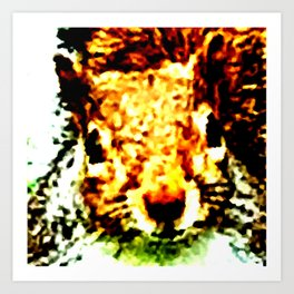 The other faces of Squirrel 1 Art Print