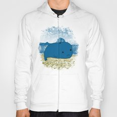Why such a lonely beach? Hoody