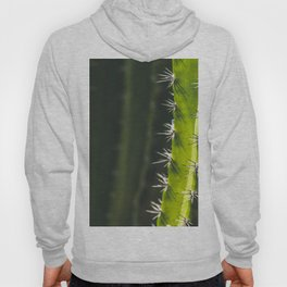 A Rather Pointed Experience Hoody