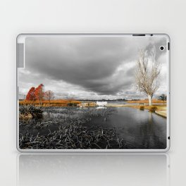 A Moody Winter's Day Laptop & iPad Skin
