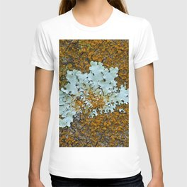Orange and green moss in tree bark T-shirt