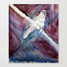 Study of Nightengale #1 Canvas Print