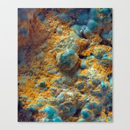 Bubbly Turquoise with Rusty Dust Canvas Print