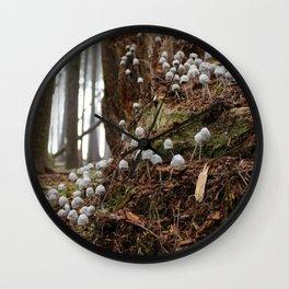Decomposition: Colony II (1) Wall Clock