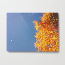Autumn leaves in the wind Metal Print