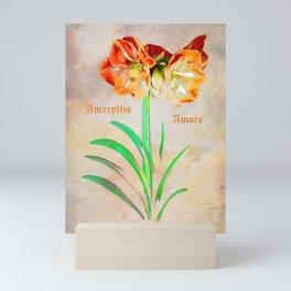 Amaryllis Amore Mini Art Print