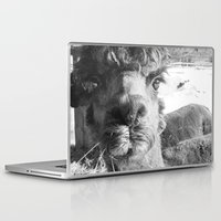alpaca Laptop & iPad Skins featuring Alpaca by WoosterTheRooster