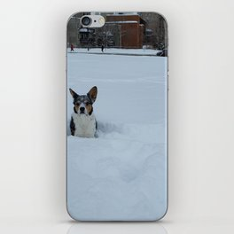 Wallace Snow Face iPhone Skin