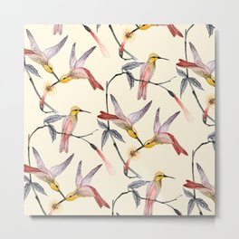Hummingbirds Metal Print