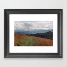 Max Patch Framed Art Print
