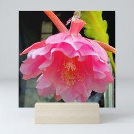 Ballerina's Pink Tutu Mini Art Print