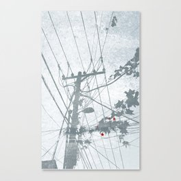 Flowers on the Power Lines Canvas Print