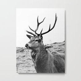 The Stag on the hill - b/w Metal Print