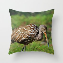 Reinvent Yourself Throw Pillow