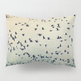 The flight Pillow Sham