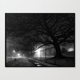 Oak in Evening Fog Canvas Print