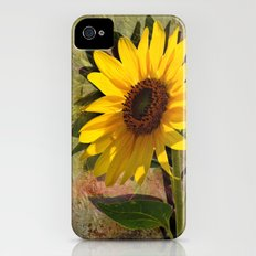 SUNFLOWERS, Double Sunshine iPhone (4, 4s) Slim Case