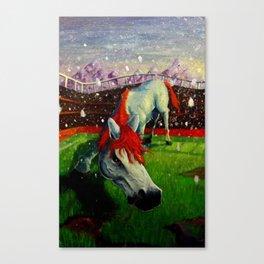 Home Field Advantage Canvas Print
