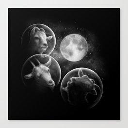 Astrogoats Canvas Print