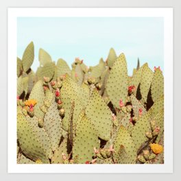 Prickly Pear #4 Art Print