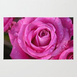 Pink rose close up with raindrops Rug