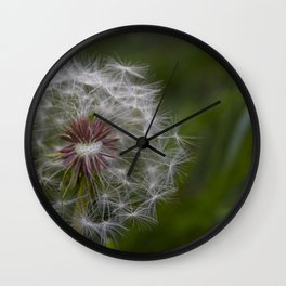 Dandelion - Make a Wish Wall Clock