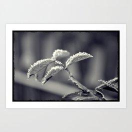 Winter's tale '4' Art Print
