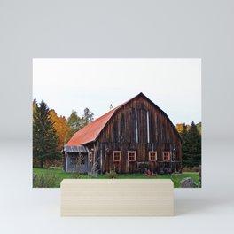 Orange Barn Mini Art Print