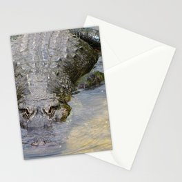 Gator Boy Stationery Cards