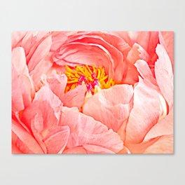 Pink Peony Petals Canvas Print