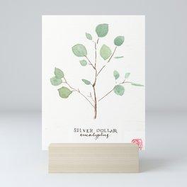 Eucalyptus Triptych 3 (Silver Dollar) Mini Art Print