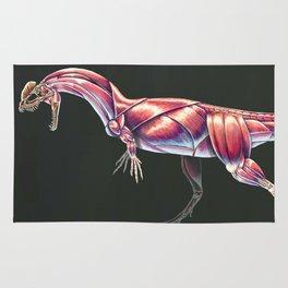 Dilophosaurus Wetherilli Muscle Study (No Labels) Rug