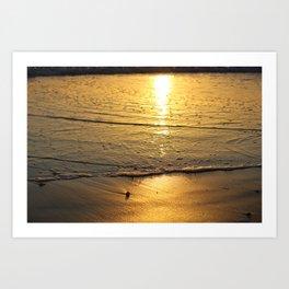 shore reflect  Art Print