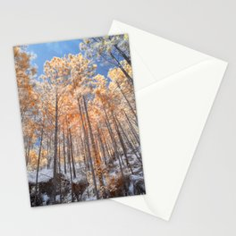 Looking up looking at the trees Stationery Cards
