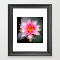 Water Lily Flower Framed Art Print