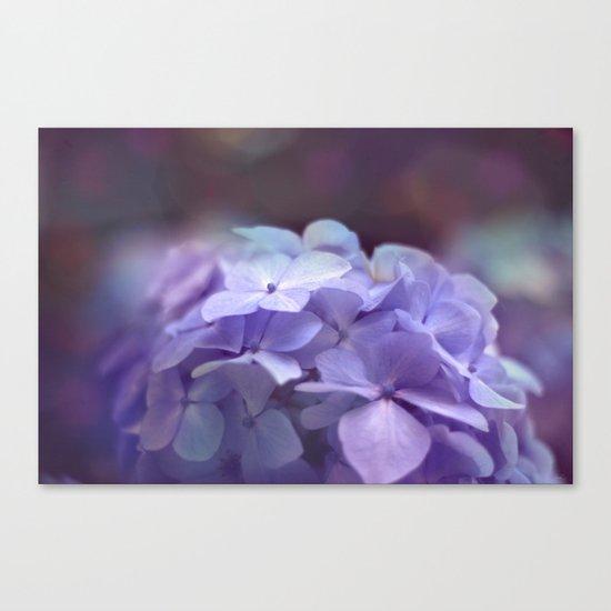 butterflies flower Canvas Print