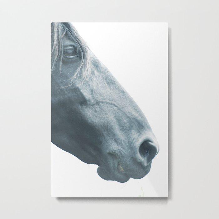 Horse head - fine art print n° 2, nature love, animal lovers, wall decoration, interior design, home Metal Print