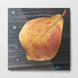 One Fallen Leaf Metal Print