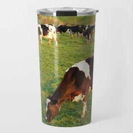 Holstein cattle Travel Mug